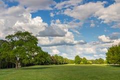 Estacione com o prado verde do prado e do verde floresta e o céu azul Cena do verão Fotografia de Stock Royalty Free