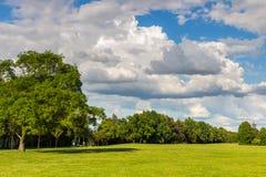 Estacione com o prado verde do prado e do verde floresta e o céu azul Cena do verão Imagens de Stock