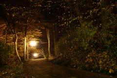 Estacione en la noche Foto de archivo