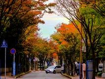 Estaciones en Japón Imagen de archivo