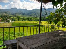 Estada da exploração agrícola do arroz em Pua, Nan, Tailândia Imagem de Stock