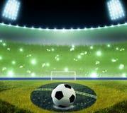 Estadio del mundial del Brasil libre illustration