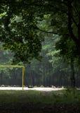 Estadio en el fútbol del bosque Fotografía de archivo libre de regalías