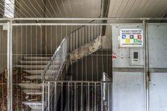 Estadios olímpicos de Berlín Fotografía de archivo libre de regalías