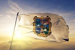 Estado de Tamaulipas de tela de pano de matéria têxtil da bandeira de México que acena na névoa superior da névoa do nascer do so fotos de stock royalty free