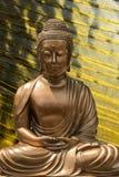 Estado espiritual de nirvana imagens de stock royalty free