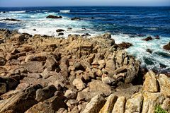 Estado Marine Reserve de Asilomar Fotos de Stock Royalty Free