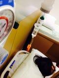 Estado no hospital Fotos de Stock