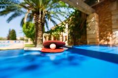 Estafas de tenis y bola de ping-pong Imagen de archivo libre de regalías