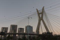 Estaiada桥梁,圣保罗, SP,巴西 库存图片