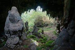 Estalactita y estalagmita Rurutu Polinesia de la caverna Foto de archivo