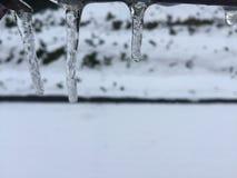 Estalactites do gelo Fotografia de Stock Royalty Free