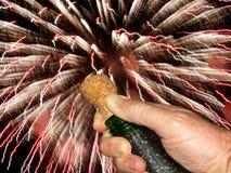 Estalando a cortiça do champanhe Fotografia de Stock