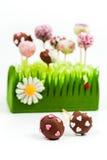 Estallidos de la torta de la tarjeta del día de San Valentín Foto de archivo