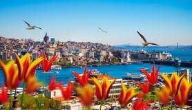 Estambul la capital de Turquía Imagen de archivo