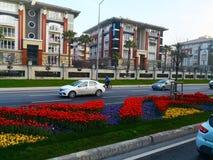 Estambul, Turquía 30 de marzo de 2018: Mañana temprana del invierno, colorida imagen de archivo libre de regalías