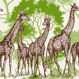 Estampado de animales stock de ilustración
