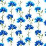 Estampado de flores con acianos Imagen de archivo