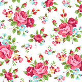 Estampado de flores con la rosa del rojo Imagen de archivo libre de regalías
