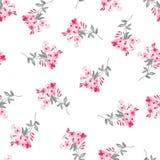 Estampado de flores con las flores rosadas Imágenes de archivo libres de regalías