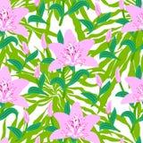 Estampado de flores con las flores rosadas grandes tropicales del lirio Fotos de archivo libres de regalías