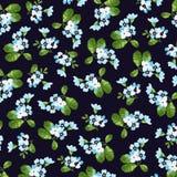 Estampado de flores con las pequeñas flores azules Foto de archivo libre de regalías