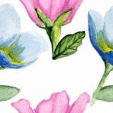 Estampado de flores de la acuarela Fotos de archivo