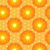 Estampado de flores inconsútil con las flores anaranjadas de la maravilla libre illustration