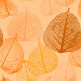 Estampado de flores inconsútil con las hojas de otoño ilustración del vector