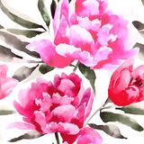 Estampado de flores inconsútil con las peonías Imagenes de archivo
