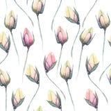 Estampado de flores inconsútil con los brotes de flor blandos rosados Foto de archivo