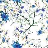 Estampado de flores inconsútil de la acuarela del vector Textura de las flores stock de ilustración