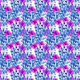 Estampado de flores inconsútil de la acuarela Textura de las flores Imagen de archivo libre de regalías