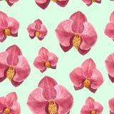 Estampado de flores de la acuarela de la orquídea en fondo azul fotografía de archivo libre de regalías
