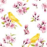 Estampado de flores de la primavera de la acuarela Foto de archivo libre de regalías