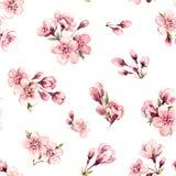Estampado de flores de la primavera de la acuarela Fotos de archivo