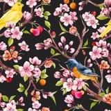 Estampado de flores de la primavera de la acuarela Fotos de archivo libres de regalías