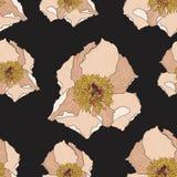 Estampado de flores lindo con la flor beige de la peonía Textura inconsútil del vector Plantilla elegante para las impresiones de libre illustration
