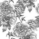 Estampado de flores monocromático Imagen de archivo libre de regalías