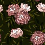 Estampado de flores púrpura de la peonía de la primavera inconsútil del vintage stock de ilustración