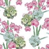 Estampado de flores, papel pintado delicado de la flor, orquídea rosada y suculento verde libre illustration
