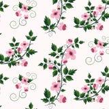 Estampado de flores retro del vector con las flores Foto de archivo