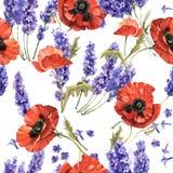 Estampado de plores de la lavanda y de la amapola del Wildflower en un estilo de la acuarela aislado Imágenes de archivo libres de regalías