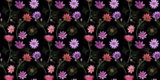 Estampado de plores del kosmeya del Wildflower en un estilo de la acuarela aislado Imagen de archivo