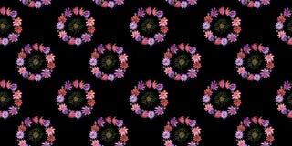 Estampado de plores del kosmeya del Wildflower en un estilo de la acuarela aislado Imágenes de archivo libres de regalías