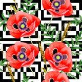 Estampado de plores de la amapola del Wildflower en un estilo de la acuarela Imagen de archivo