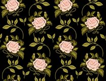Estampado de plores de rosas en un vector Foto de archivo libre de regalías