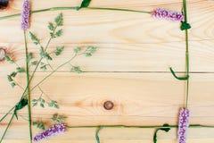 Estampado de plores, visión superior, marco de flores, estampado de flores, primavera, estructura, textura, centro, flores en el  imagen de archivo libre de regalías