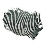 Estampado de zebra para su diseño Foto de archivo libre de regalías