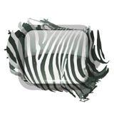 Estampado de zebra para su diseño Imagen de archivo